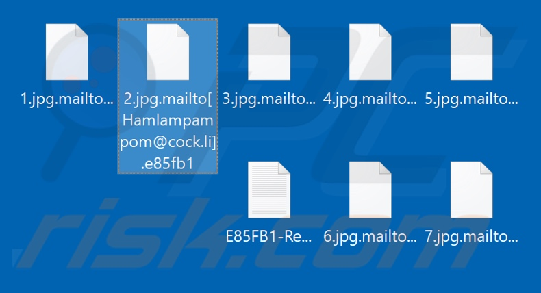 Files encrypted by Mailto